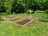 Alter Garten 2 (Karree 49)